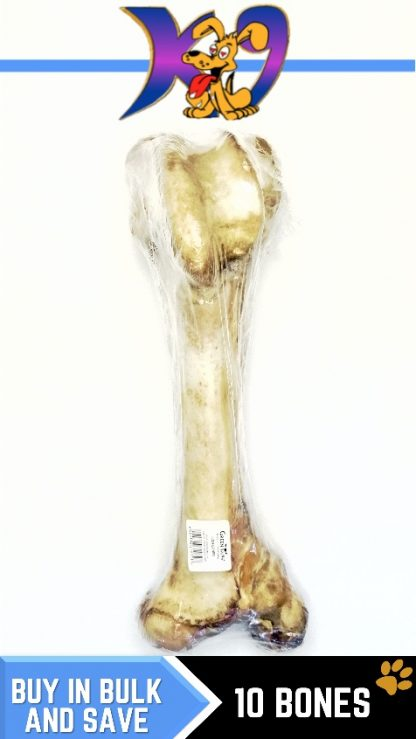 DOG-TREATS-dino-BONE-10